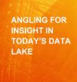 Aberdeen – 获取当今数据湖的见解