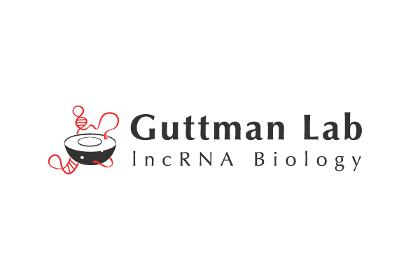 Laboratorio Guttman