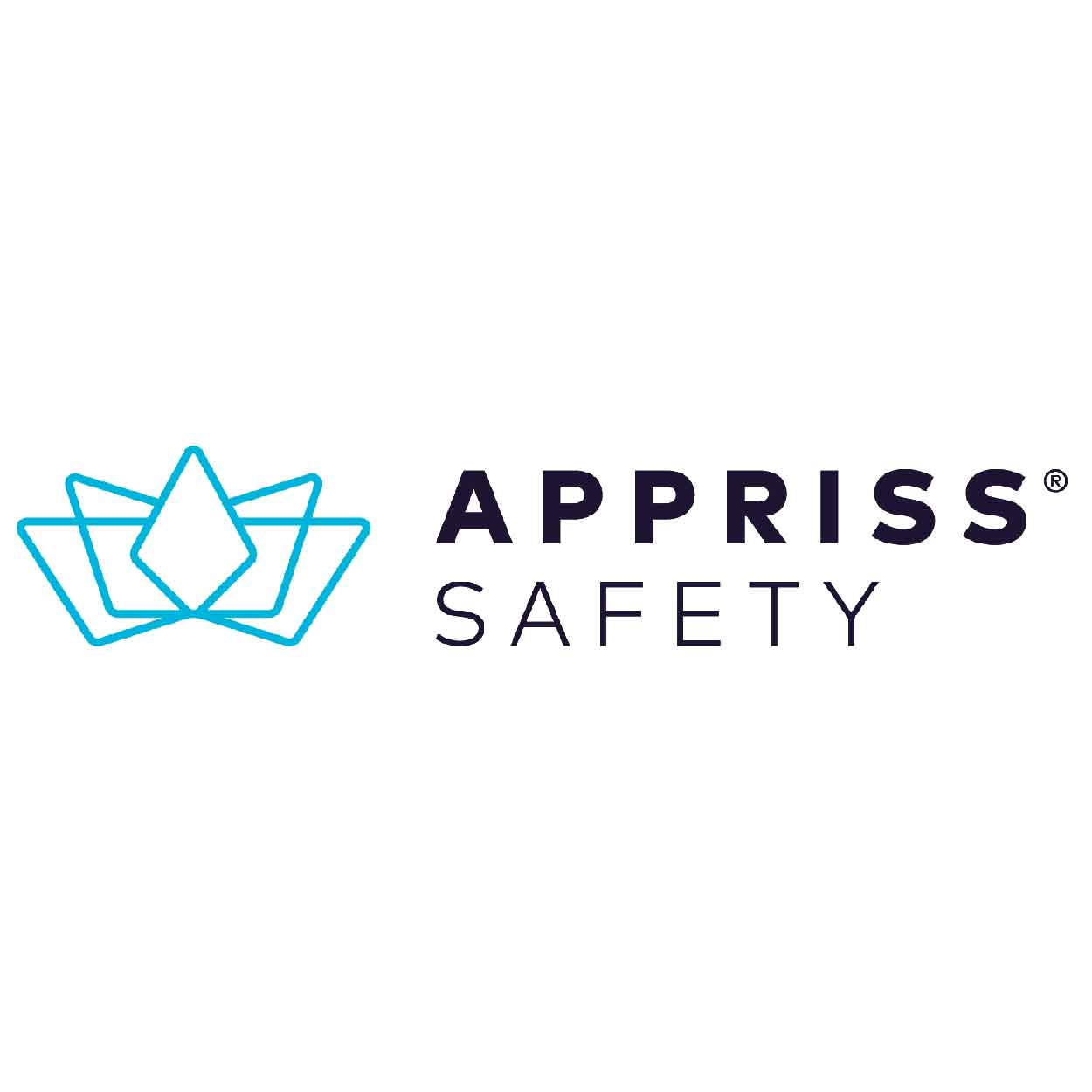 Apprisssafety300-01