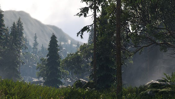 Woodland Asset Package
