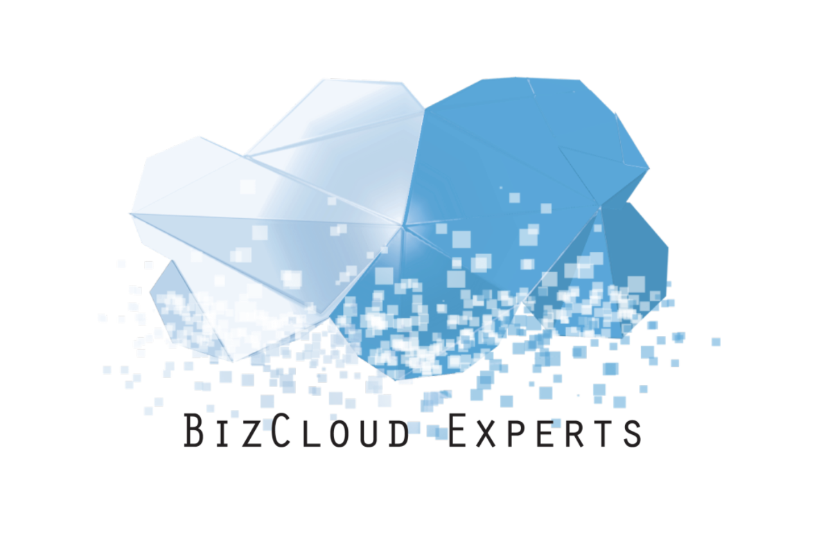 BizCloud Experts