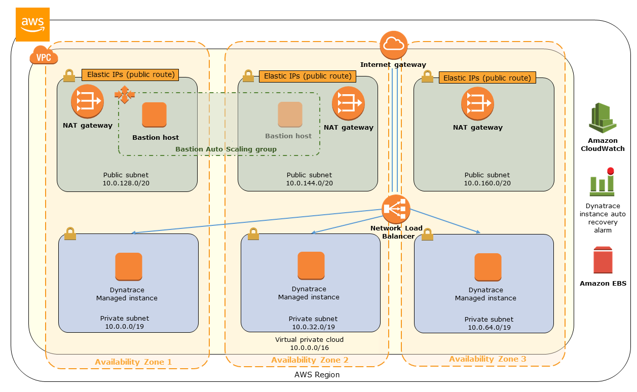 architecture diagram for a dynatrace managed cluster on a w s